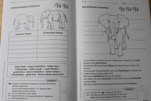 Tiere in aller Welt 1./2. Klasse