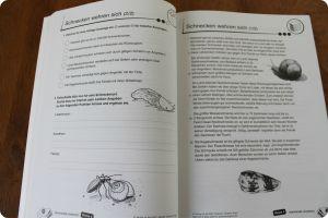 Spannende Lesetexte Klasse 4