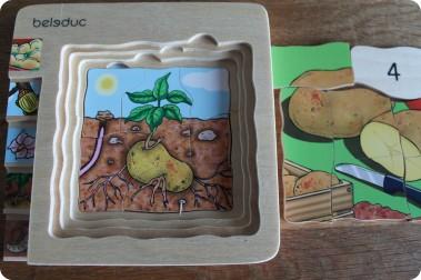 Unterrichtsmaterial Kartoffel