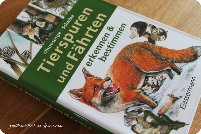 Tierspuren und Fährten