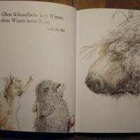 Sebastian Meschenmoser - Herr Eichhorn und der erste Schnee