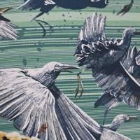Florian Bayer und Alicia Klepeis - Auf Safari!: Was Afrikas wilde Tiere alles können