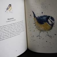 Hannah Dale - Tierleben: Auf der Wiese, im Wald und am Wasser