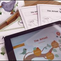 Die Amsel - Lesekartei | Übungsheft | Interaktive Präsentation